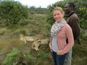 Im Gehege mit Geparden - bei der Jagd über 90 km/h schnell